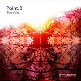 PointB_Versus_Free